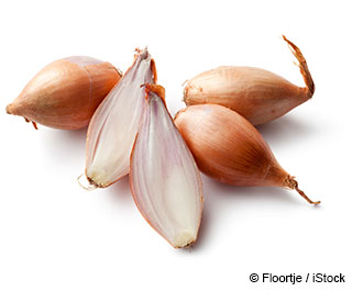 What are Shallots Good For?
